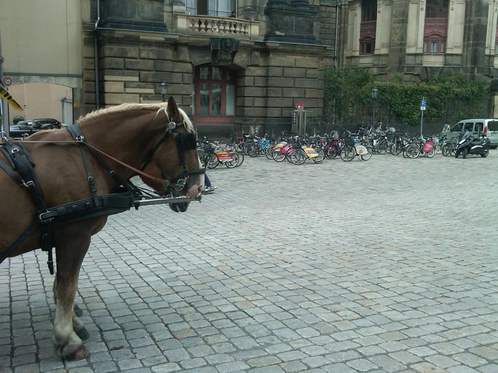 Dresden-Transit