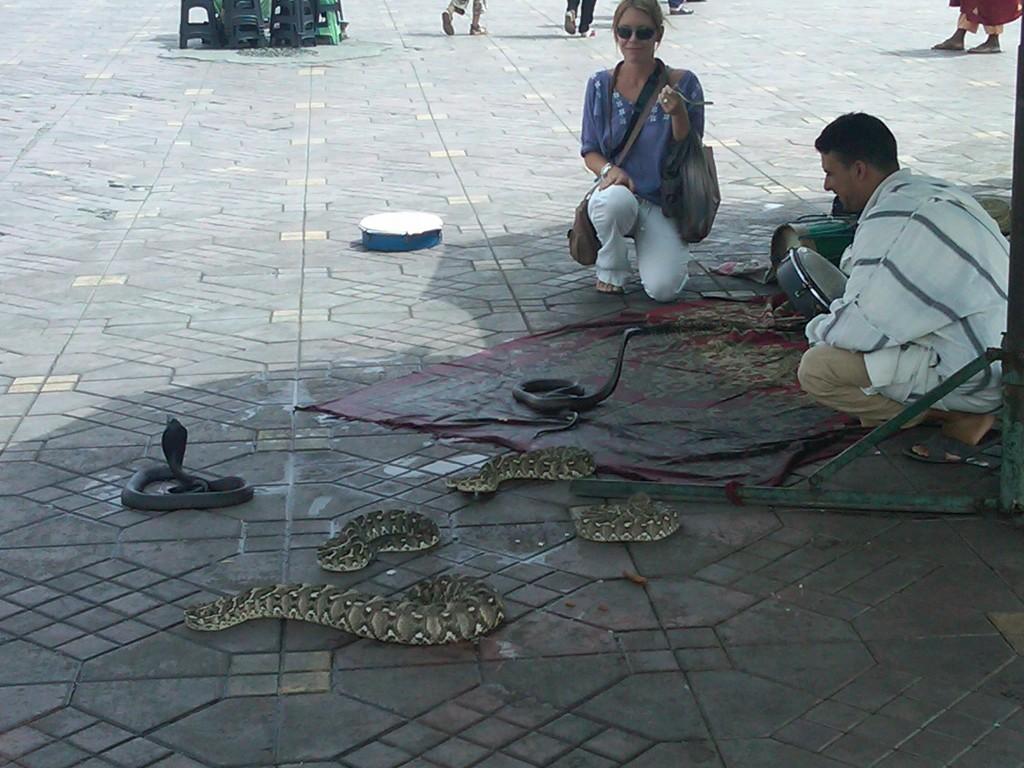 Marrakech-Snakes1